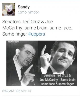 a report on the senator joe mccarthy